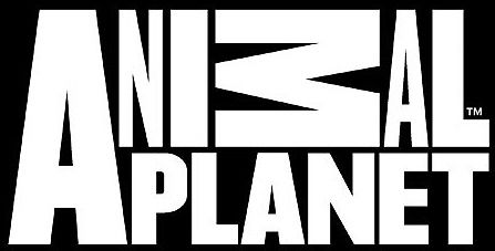 animal_planet_new_logo