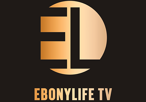 Sales Executive at EbonyLife TV