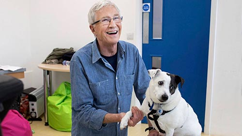 Paul O'Grady: For the Love of Dogs 8