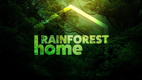 Rainforest Home
