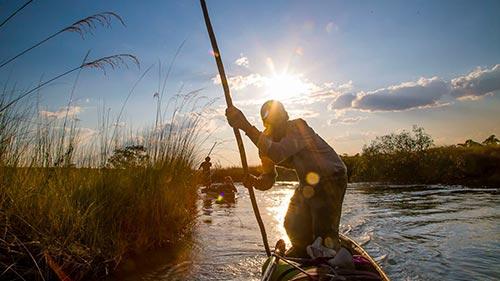 The Flood: Africa's Okavango