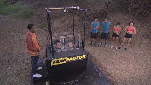 Fear Factor 8