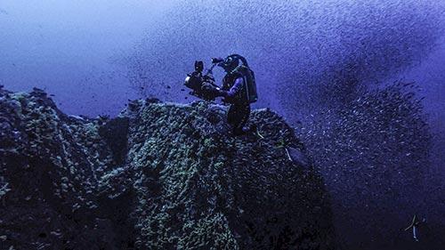Shipwrecks: When History Resurfaces