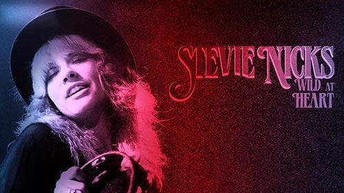 Stevie Nicks: Wild at Heart