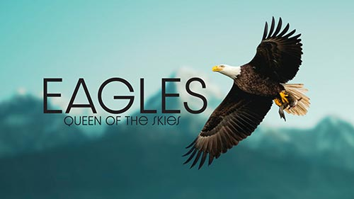 Eagle: Queen of the Skies