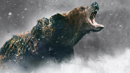 Alone 8: Grizzly Mountain