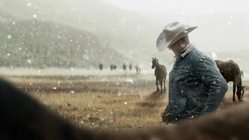 My Heroes Were Cowboys